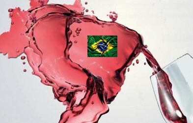 L'export vitivinicolo italiano in Brasile: un business in continua crescita
